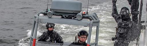 Buffers Marine